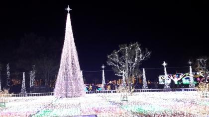 2014-12-16-8.jpg