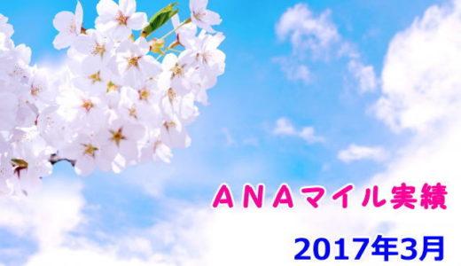 2017年3月マイル実績【ANA58,000マイル超獲得】